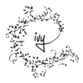 ivy_logo_200x200